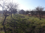 Vanzare teren Ciorogarla langa padure